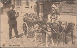 Belgique 1923. Carte Postale Laitière Flamande. Quatre Chiens Tirant Une Charrette. Policier Dressant Une Contravention. - Dogs