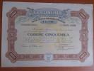 Coloniale FIUME (Austria / Italy / Yugoslavia) 25 Azioni / 25 Shares - 5000 Kronen 18/10/1919 - A - C