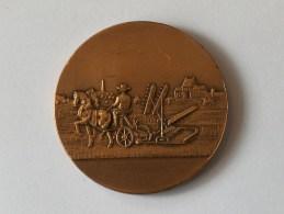 MEDAILLE AU MERITE AGRICULTURE - Jetons & Médailles