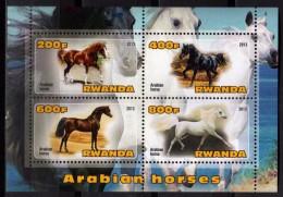 Rwanda 2013 - Chevaux Arabes, Horses - BF 4 Val Neufs // Mnh - Horses