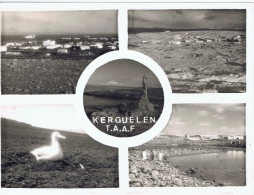ZX Kerguelen+ Ansichten - TAAF : Terres Australes Antarctiques Françaises