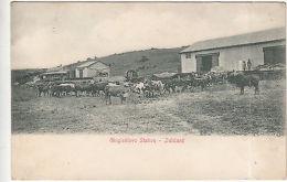 South Africa: Postcard: Ginginhlovu Station, Zululand - South Africa (...-1961)