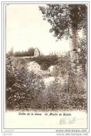 WALZIN ..-- DINANT ..-- Le MOULIN . 1906 Vers BXL ( Melle Lucie VAN BELSEN ) . Voir Verso . - Dinant