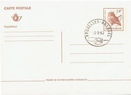 OIS-L41 - BELGIQUE Entier Postal Chouette - Hiboux & Chouettes