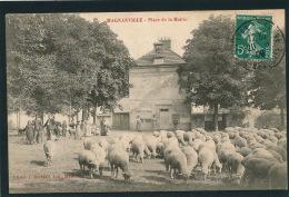 MAGNANVILLE - Place De La Mairie (animation Avec Moutons) - Magnanville