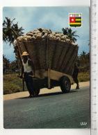 République Du Togo - Chaette De Noix De Coco / A Cartful Of Coconuts - Togo