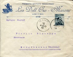 7654 Italia, Busta Viaggiata 1913 Per Mongrassano Da Premiato Ist. Bacologico Leo Dell'oro, Marone Lago D'iseo - Variedades Y Curiosidades