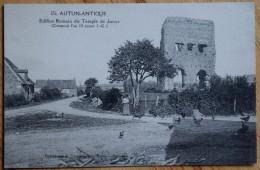 71 : Autun Antique - Edifice Romain Dit Temple De Janus - Animée : Petite Animation - Poules - (n°5980) - Autun