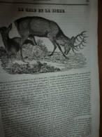 1834 LM :Le CERF Et La BICHE; Temple-Bar (London);Saint-Germain-l'Auxerrois;La Rhinoplastique (nez);GRAND-DUC (oiseau) - Vieux Papiers