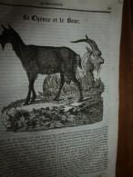 1834 LM : Chèvre Et Bouc; Le Bananier;FLORENCE Et Le PONT De La CARRAJA;Le Montagnard Et Le Chevreuil;Porte St-Antoine - Vieux Papiers