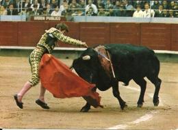 Corrida Toros / El Cordobes - Corrida