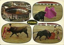 Corrida Toros / Espana - Corrida