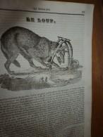1834 LM : Le LOUP Selon Buffon; L'ALHAMBRA (La Porte Du Jugement,La Cour Des Lions); PAMPAS,GAUCHOS Et LASSO ; Claudion - Vieux Papiers