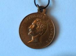 MEDAILLE MEDALS LOUIS NAPOLEON BONAPARTE SOUVENIR HISTORIQUE DU 10 MAI 1852 - Professionnels / De Société