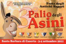 CASERTA - 2011 - III Edizione Palio Degli Asini - - Costumi