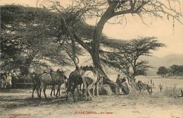 ETHIOPIE DIRRE DAOUA AU REPOS - Ethiopia