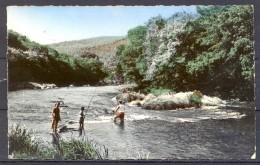 1961 , TARJETA POSTAL CIRCULADA , TEMA PESCA , FISHING , VALLÉE DE LA SEMOY , PESCA A MOSCA - Pesca