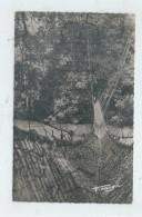 Guinée : Le Pont De Lianes En 1950  PF. - Guinée Equatoriale
