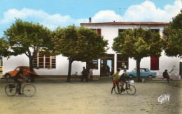 CPSM ILE DE RE. La NOUE, La Place, Cyclistes, Voitures Dont 2 Cv, Simca 1000. - Ile De Ré