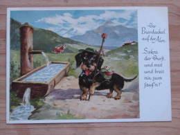 Hund002 : Dackel:  Der Bierdackel Auf Der Alm - Ungelaufen - Gut Erhalten - Hunde