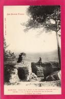 88 VOSGES ST-DIE, Roche De La Bure Ou Des Corbeaux, Animée,  (Ad. Weick) - Saint Die