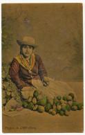 Frutera De Lima Aguacates Vendeuse D' Avocats Palta  Vers Cuba 1913 Avocado Seller - Pérou