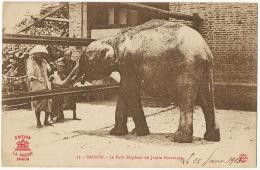 Saigon 53 Le Petit Elephant Du Jardin Botanique Edit La Pagode - Viêt-Nam
