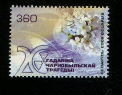 BELARUS MINT NEVER HINGED POSTFRISCH EINWANDFREI NEUF SANS CHARNIERE YVERT 549 - Belarus