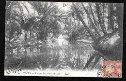Nefta Vue Sur Le Lac Dans L'oasis  ( Plis Dans Un Angle )     - Haw99 - Tunisie