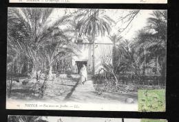Tozeur - Lvue Dans Un Jardin    - Haw101 - Túnez