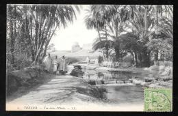 Tozeur - Vue Dans L'oasis     - Haw104 - Túnez