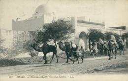 DZ BISKRA / Hamman-Chérif / - Biskra