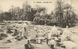 DZ BISKRA / Cimetière Arabe / - Biskra