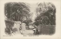 DZ BISKRA / Chemin De Monsieur Cide / - Biskra