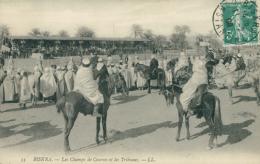DZ BISKRA / Les Champs De Courses Et Les Tribunes / - Biskra