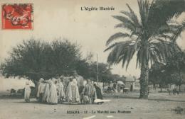 DZ BISKRA / Le Marché Aux Moutons / - Biskra