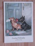 """Hund047 : Dackel Und Schnautzer  -""""Herzliche Glückwünsche Zum Namenstage"""" - 1956 Gelaufen - Gut Erhalten - Hunde"""
