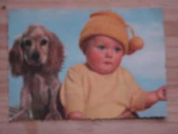 Hund067 :Cocker Spaniel Mit Baby  - Col. Ansicht -  Ungelaufen - Gut Erhalten - Hunde