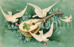 Postcard / CP / Postkaart / RELIEF / Fleurs / Flowers / Musical Instrument / Pigeons - Sonstige