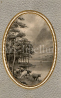 Postcard / CP / Postkaart / RELIEF / Countryside / C M R E / 1909 - Sonstige