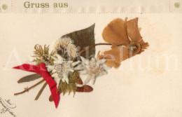 Postcard / CP / Postkaart / Fleurs Séchées / Fleurs Séchées / Edelweiss / 1905 / Ed. E.U. Düsseldorf - Sonstige