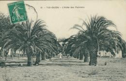 DZ TIZI OUZOU / Allée Des Palmiers / - Tizi Ouzou