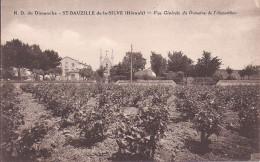 SAINT BAUZILLE DE LA SILVE   VUE GENERALE DU DOMAINE - France