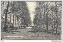 NAMUR ..-- Avenue Du Prince Albert . Vers GAND ( Melle Bricusse ) .  Voir Verso . - Namur