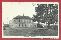 Gochenée - Les Ecoles ( Voir Verso ) - Doische