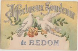 CPA 35 REDON Souvenir Fantaisie Hireondelles Affectueux Souvenir Carte Colorisée - Redon