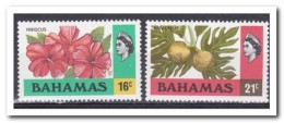 Bahama´s 1976, Postfris MNH, Flowers - Bahama's (1973-...)