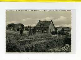 WESTOUTRE WESTOUTER MONT ROUGE LA GROTTE  Ecrite 1961    Mont Noir - Heuvelland