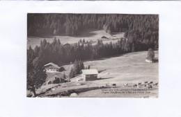 ARACHES  - LES  CARROZ  (Hte-Savoie) 955 M.  -  Chalet  Des  Amis  De  La  Nature.  Plaine  Joux (carte Photo) - Autres Communes