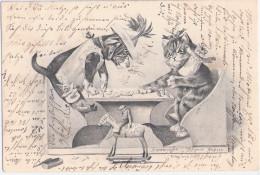 HUND + KATZE Spielen Domino M Spielzeug Figuren Kasperle Schaukelpferd Affe 7.11.1903 Dogs Cats - Katzen